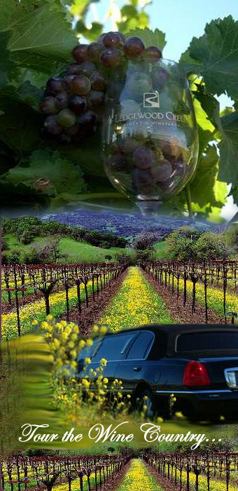 Photo created by Shars Web Designs of Some of the scenes along the Napa Valley Wine Country.